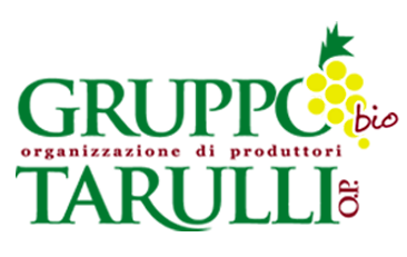Gruppo Tarulli OP